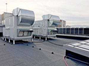 Roof-Fifth_2 (2)