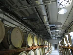 Тангра проект за винарска изба Стара Загора